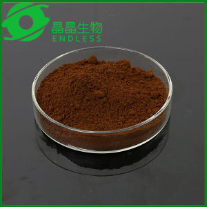 Guangzhou Endless Organic Reishi Mushroom Extract Powder pictures & photos