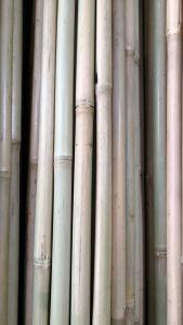 Bamboo Garden Supplies/Bamboo Cane for Support Grape Growing 150cm 12--14mm