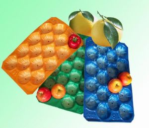 39X59cm Plastic Fruit Tray pictures & photos