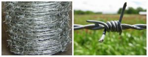 Hot Sale 2mm *2mm Galvanized Barbed Wire for Farm pictures & photos