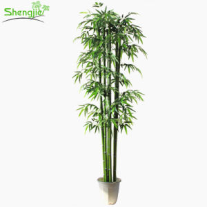 Evergreen Indoor Artificial Plastic Lucky Bamboo Plants