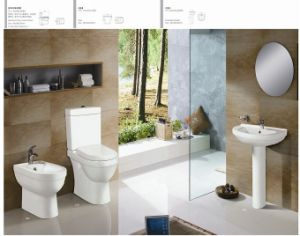 One -Piece Water Closet CE-T234 pictures & photos