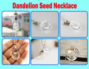 Dandelion Wishes Glass Bottle Necklace