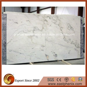 Best Price White Macubas Granite Slab