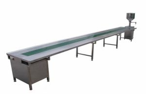 Packaging Platform/Packaging Conveyor pictures & photos