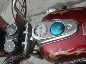 250cc 150cc Adult Motorcycle Motor Tricycle 3 Wheel Motorcycle for Sale pictures & photos