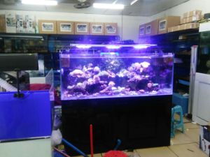 china wifi app control led aquarium light for coral reef china app