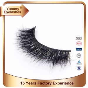 3D Mink Lashes Packaging Boxes pictures & photos