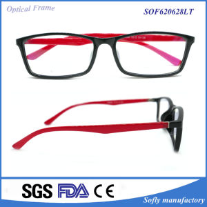 Tr90 /Injected Plastic Eye Glasses