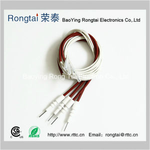 Ceramic Ignition Electrode pictures & photos
