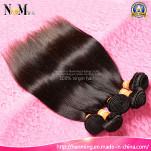 Clean Weft No Lice Darling Hair Raw Brazilian Straight Hair pictures & photos