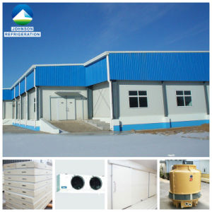 1000t Walk in Vegetable Logistic Cold Cooling Room