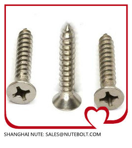 Shallow Head Self Tapping Screw pictures & photos