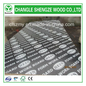Professional Manufactured 18mm Logo Film Faced Plywood