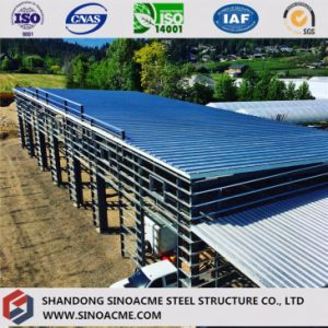 Sinoacme Prefabricated Steel Structure Car Parking Building pictures & photos