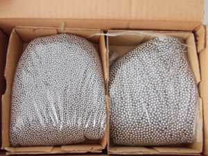 G100 G1000 Stainless Steel Ball