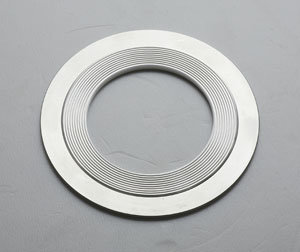 PTFE Filled Spiral Wound Gasket pictures & photos