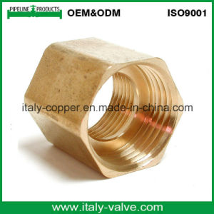 Italycopper Produced NPT Brass Coupling (AV9027) pictures & photos
