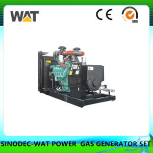 20-120kw Natural Gas Generator Set with Ce, SGS Approval