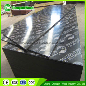18mm Black Film Faced Plywood /Marnine Plywood