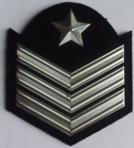 Metal Badge pictures & photos