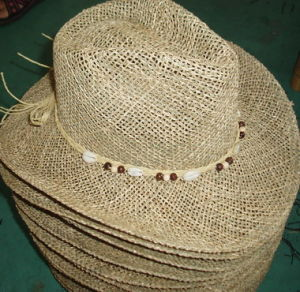 Straw Hat (H-37) pictures & photos