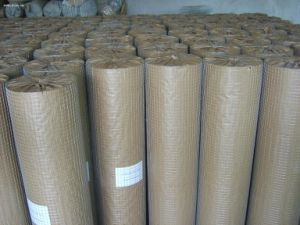 Hot Sale Square Wire Mesh with Welded pictures & photos