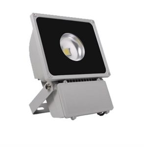 60degree COB LED Flood Light with Bridgelux; Epistar LED Chip