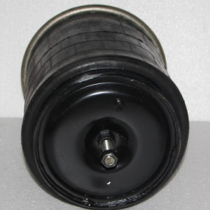 Air Spring 4912np07 and Goodyear: 1r13-711 for Renault pictures & photos