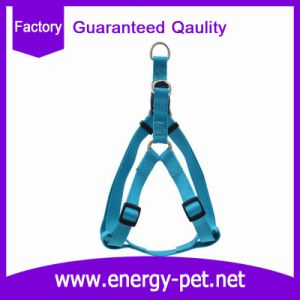 America Popular Easy Walking Dog Harness