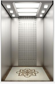 Syney Passenger Elevator with Special Design (16K026) pictures & photos