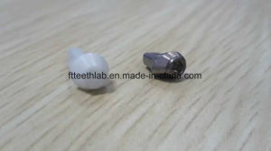 Castable Plastic Abutments for Dental Implant Cases pictures & photos