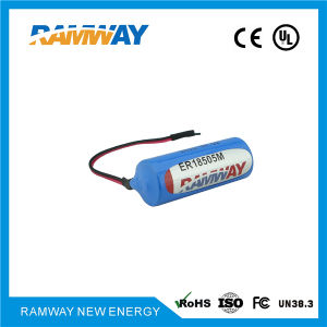 a Size 3.6V 3500mAh Li-ion Battery for Gas Detectors with Long Lifetime (ER18505M) pictures & photos