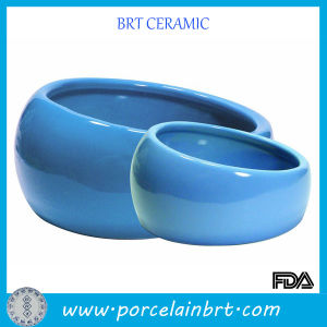 Easy to Drink Blue Pet Water Bowl for Dog pictures & photos