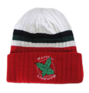Red Winter Knitted Hats Wool Hats pictures & photos