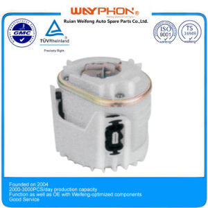 Electric Fuel Pump Module 1h0919051k, 1h0919051d for V. W Car (WF-A03-2)