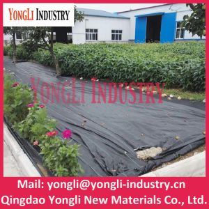 Black PP Weaven Ground Weed Control Barrier Mat for Agriculture pictures & photos