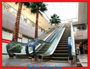 Good Quality and Competitive Price for Outdoor Escalator pictures & photos