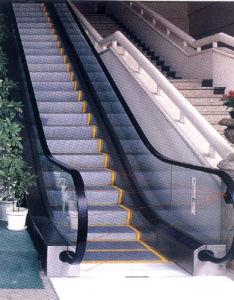Escalator / Moving Walk / Moving Stairs (W8)
