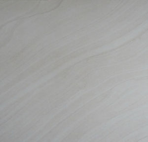 Hot Sale Foshan Factory Rustic Floor Tiles (6TF095)