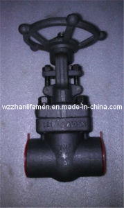 DIN&API Forged Steel Bellows Seal Gate Valve