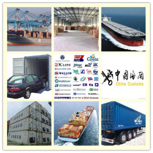 Consolidate Freight Shipping Logistics Service From China to East Australia