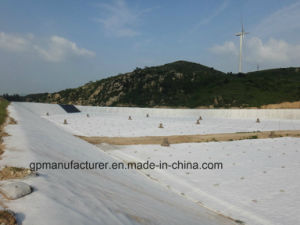 Non Woven Geotextile Bag for Environmental Protection pictures & photos
