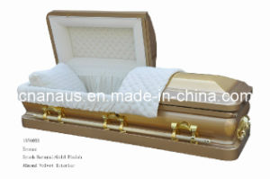 Bronze Casket (ANA) pictures & photos