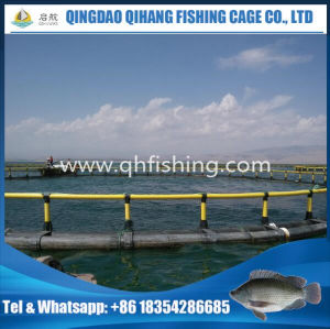 High Quality Floating Fish Cage/Aquaculture Cages for Fish pictures & photos