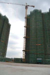 Qtz100 (TC6513-6) China Self-Erecting Tower Crane pictures & photos