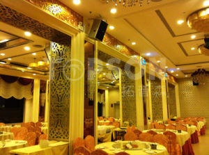 Topson Titanium Gold Stainless Steel Screens Room Dividers for Interior Decoration