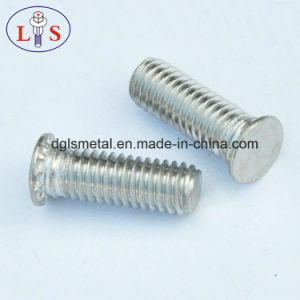 Ss 304 Clinching Screw Pan Head Cross Recess Machine Screw pictures & photos