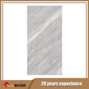 Grey Color Italy Design Full Body Marble Tile (3-61237)