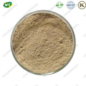 China Kosher Approved Natural Green Coffee Bean Extract Powder